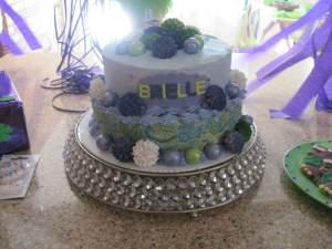 Brielle's amazing cake!