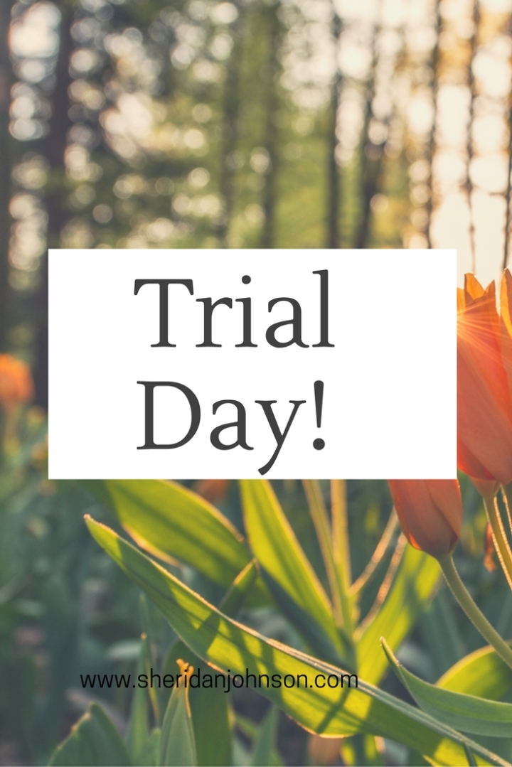 trial-day-1